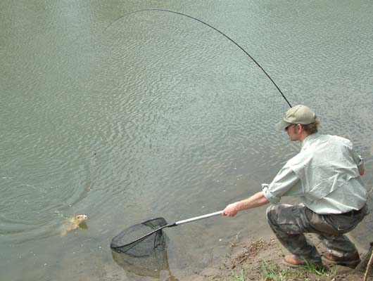 Netting a Fish