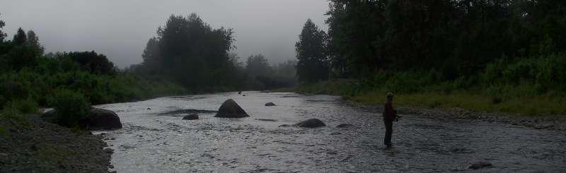 Lower Anchor River Fog