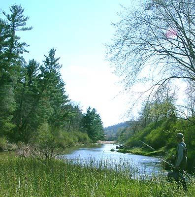 Eau Galle River Wisconsin Landscape