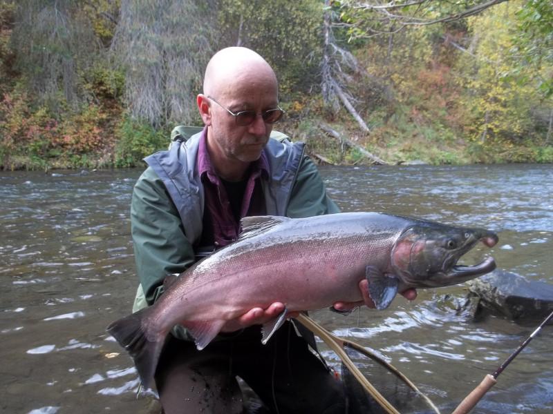 russian river coho silver salmon