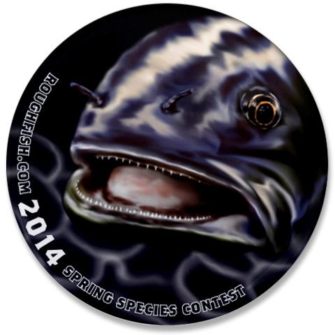 Roughfish.com Species COntest Button 2014