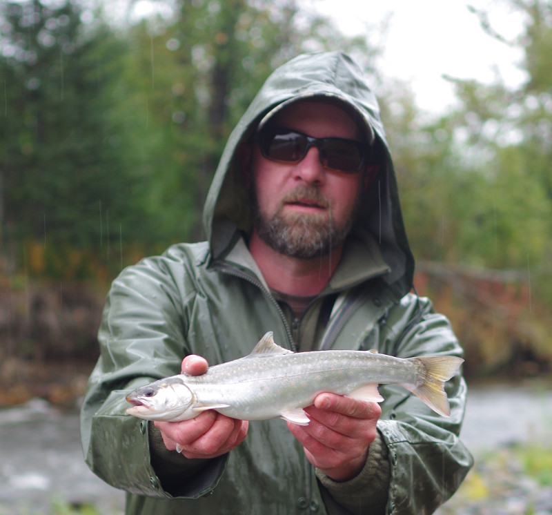 anchor river dolly varden alaska