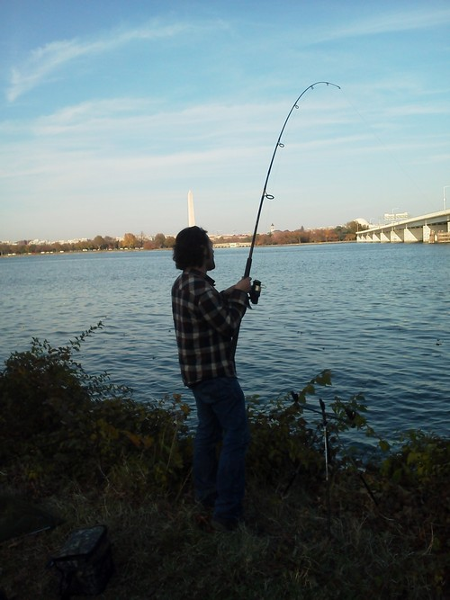 Virginia species hunt for Hunt fish va