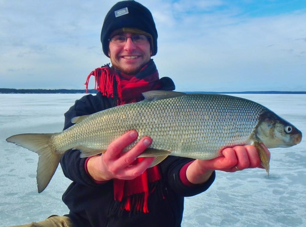 Types of fish in whitefish lake montana for Whitefish montana fishing