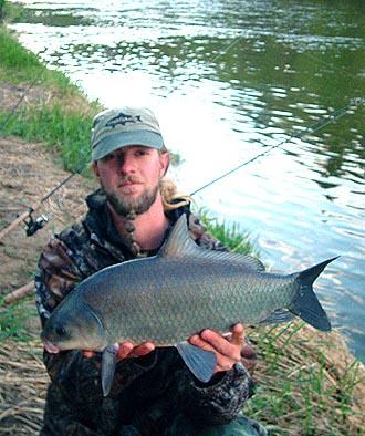 Red Cedar River Smallmouth Buffalo