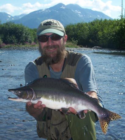 Pink Salmon Onchorhyncus gorbuscha