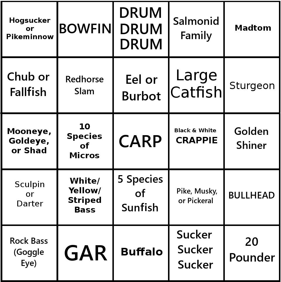 Roughfish Bingo Card