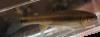 Semotilus thoreauianus Dixie Chub