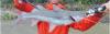 Brachyplatystoma vaillantii Laulao Catfish